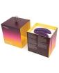 We-Vibe Sync - Purple