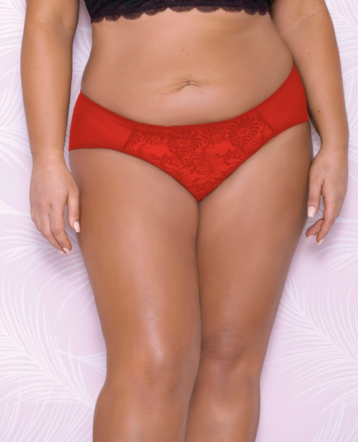 Scallop Lace & Mesh Hipster Panty Red 3X